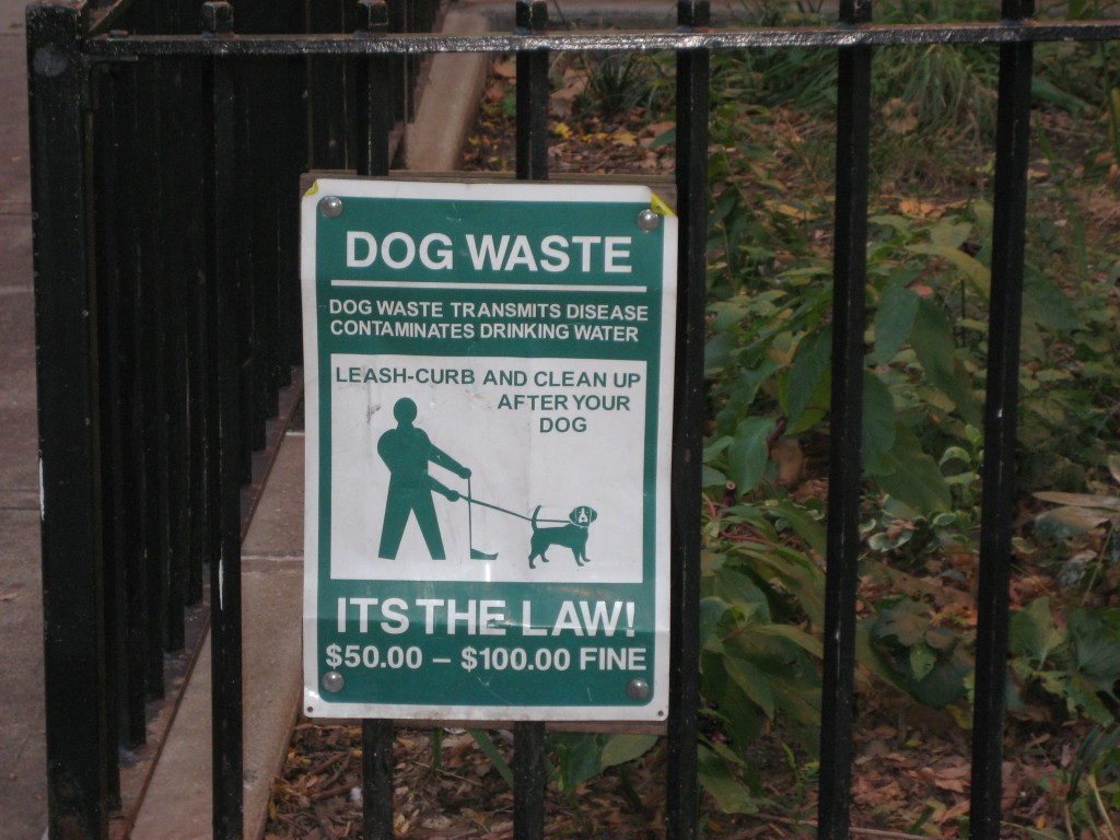 dog waste laws