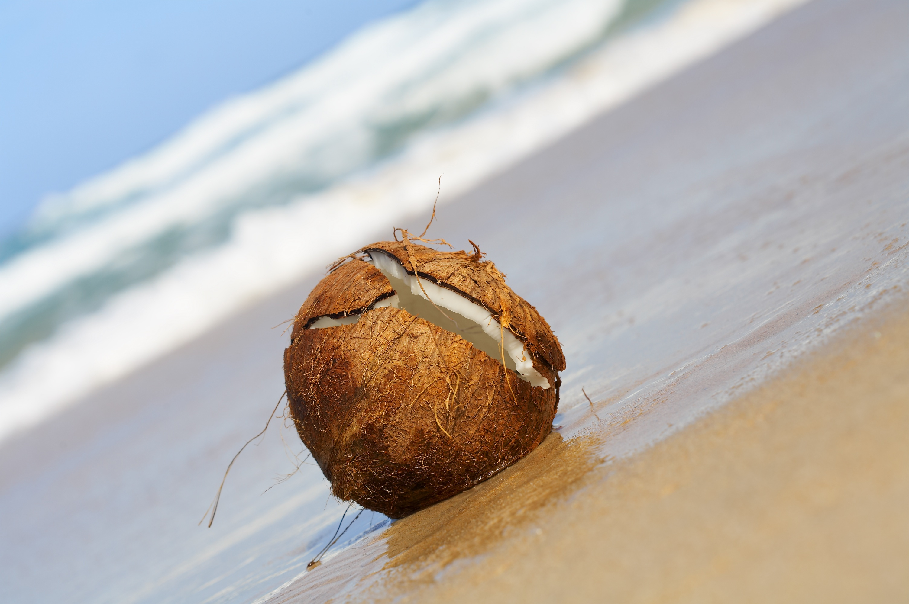 Mamavation Monday: Why Coconut Water is Good for Breastfeeding Active ...