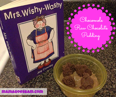 Mrs Wishy Washy's Raw Chocolate Pudding